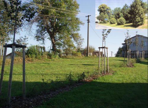 Parkové úpravy Nový Kramolín